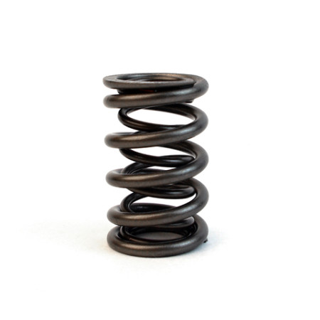 Toyota 4AGE - 1600 16v - double valve springs