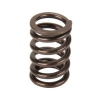 valve spring single